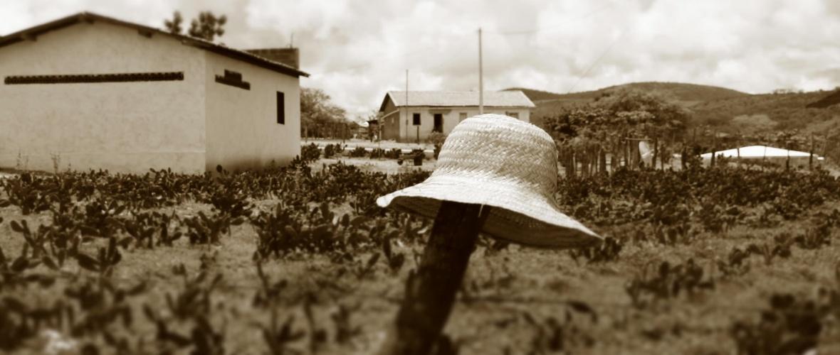 A luta pela terra é fundamental para a sobrevivência no semiárido.  Foto: Joabes R. Casaldáliga