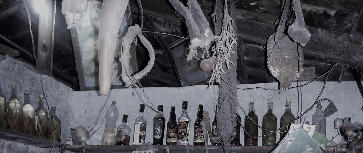 A bodega de Tiago Preto tem uma decoração curiosa: pé de gavião, mandíbula de peixe, couro de cobras. Foto: Paulo Oliveira