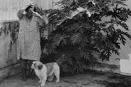 Carmeita gostava tanto de seu cão que pagou para ele ser enterrado. Reprodução / Silvio Tito