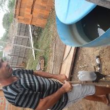 Malhando e plantando