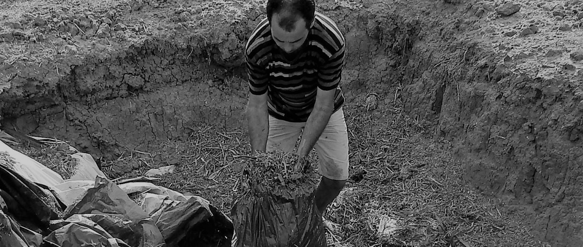 A Fazenda Pau de Colher chega a estocar 10.800 quilos de forragem para os animais. Foto: Paulo Oliveira