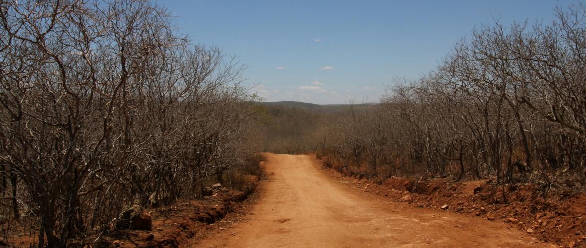 Caminho entre Pão e Açúcar e a Ilha do Ferro, que não é ilha. Foto: Flávia Correia