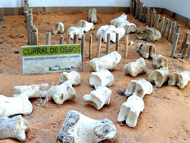 Curral de ossos, no museu dos brinquedos, no Rio Grande do Norte. Foto: Reprodução