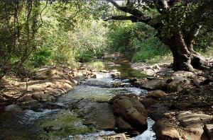 Rio Verde a 20 km a montante da barragem de Mirorós, em setembro de 2008. Foto: Tássio Cunha